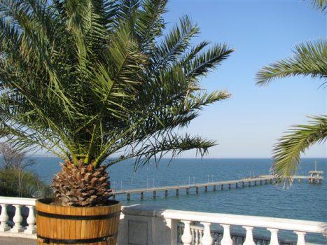 Морската градина в Бургас
